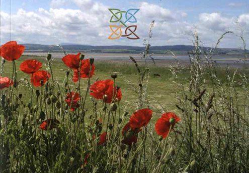 Book 'Peregrini Lindisfarne: An Anthology'